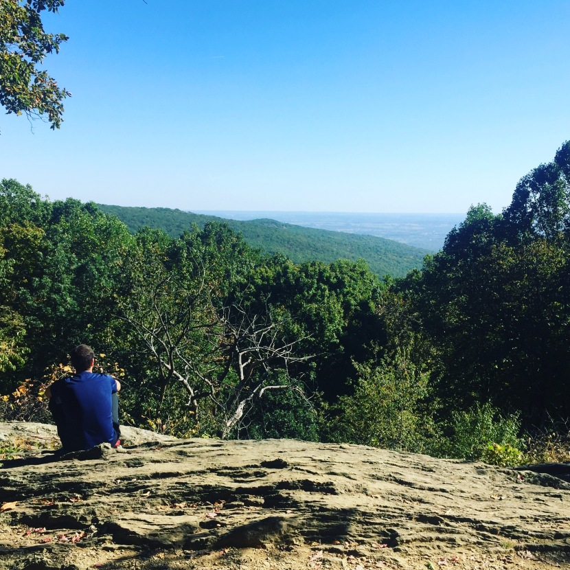 Maryland Hikes: Catoctin Mountain Park, the Hog Rock Trail