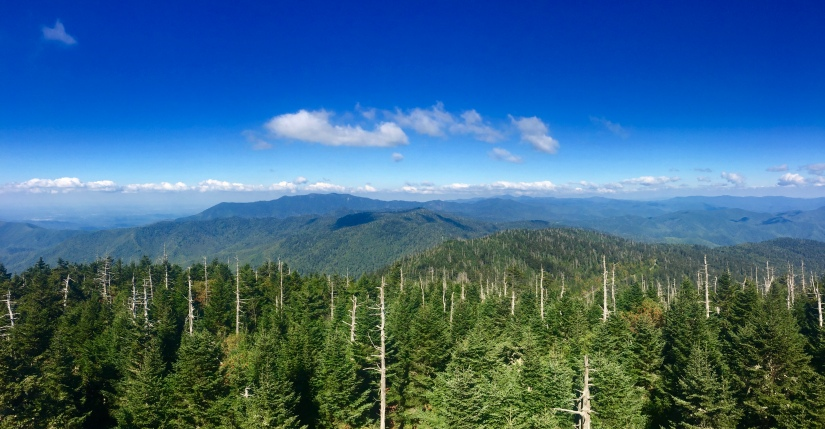 Clingman's Dome Observation Tour