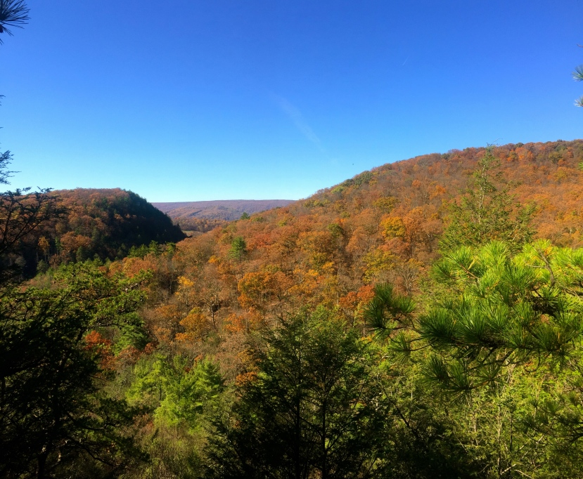 Maryland Hikes: Rocky Gap Canyon